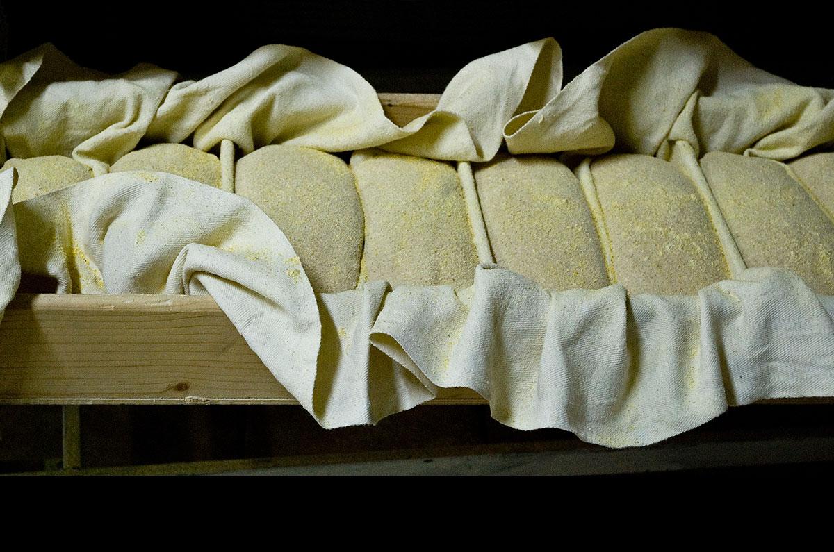 Carla Cacianti, Pane da cuocere