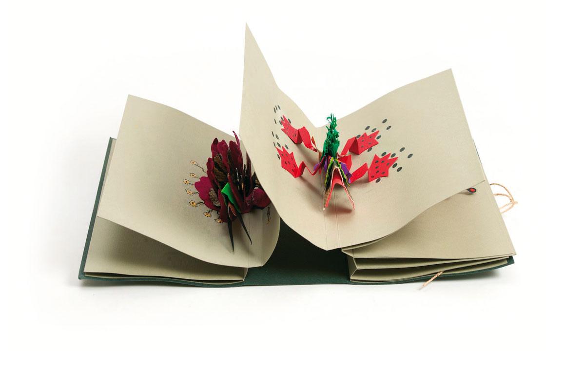 Isa Martini - Libro Pip Poh